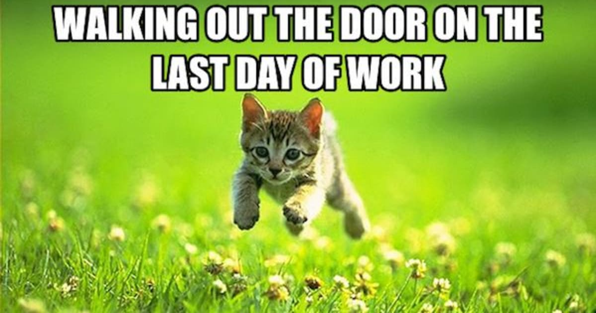 25 Memes To Celebrate Your Last Day At Work Fairygodboss