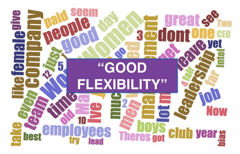Fairygodboss - flexibility
