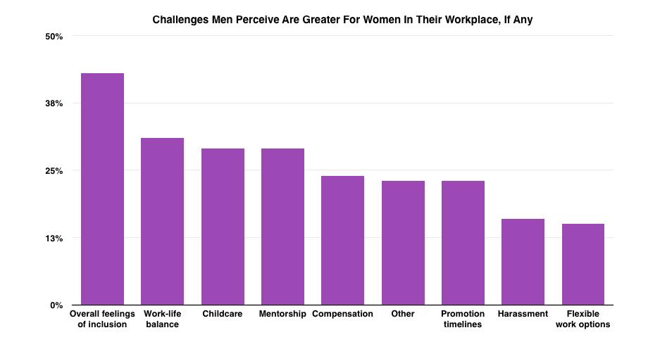 Men's perception of working women