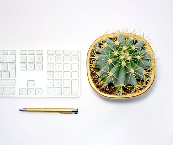 Cubicle Decor Ideas To Brighten Your Workspace   Fairygodboss