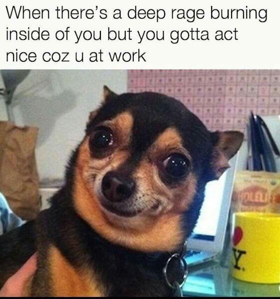 Hilarious Work Memes To Get You Through Your Day (List25)  |Too Bad Work Meme