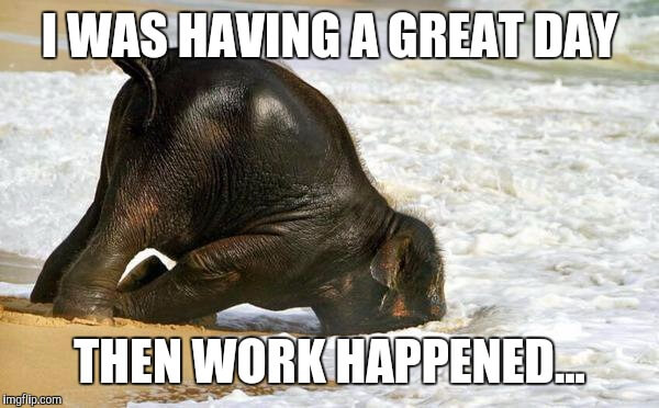 25 Mood Improving Memes For When You Re Having A Bad Day At Work Fairygodboss