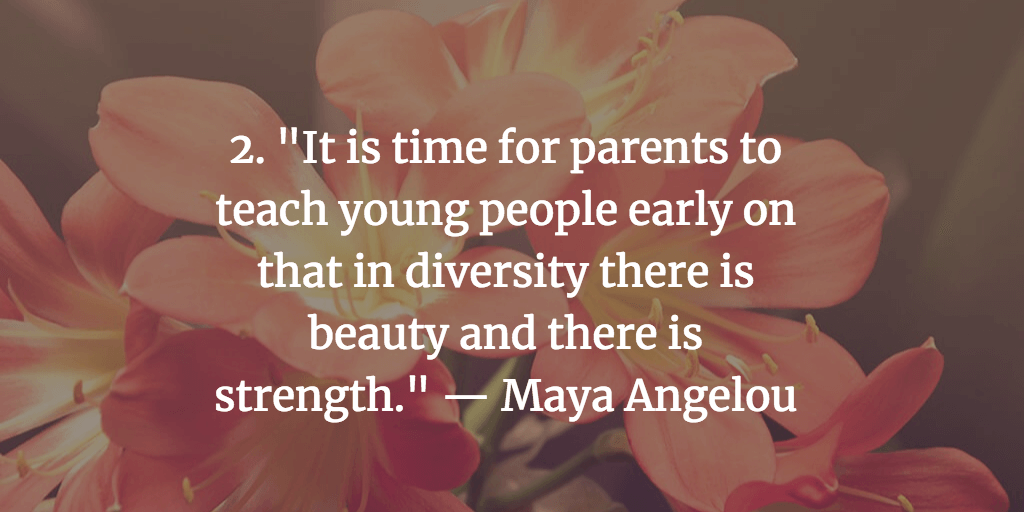 Cultural Diversity Quotes To Inspire Action Fairygodboss